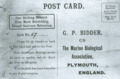 1906MarineBiolAssnPostcard.png