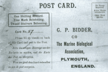 This Postcard Inserted Into A Bottle Launched By The Marine Biological Association Of UK Circa 1906 Was Found In 2015