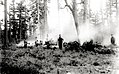1923. Burning ponderosa pine log to control western pine beetle. Area 2. Southern Oregon Northern California cooperative control project. (33566998986).jpg