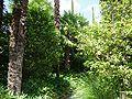 2008 07 Botanical Garden Meran 71760R0437.jpg