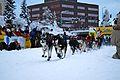 2010 Yukon Quest (4341597650).jpg