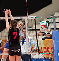 20130330 - Vannes Volley-Ball - Terville Florange Olympique Club - 087.jpg