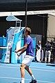 2013 Australian Open IMG 5104 (8395667547).jpg