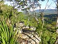 2016061808 Nationalpark Ta Phraya.jpg