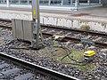 2017-09-19 (159) Bahnhof Amstetten.jpg