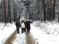 2017-12-09 Hike Ratingen and surroundings. Reader-30.png