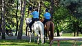 2018 Parcul IOR Jandarmerie (2).jpg