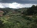 201908 Fields in Nibo Town, Xide County.jpg