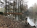 2020-12-12-Hike-to-Rheydt-Palace-and-its-surroundings.-Foto-47.jpg