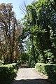 21-212-5010 виноградівський парк.jpg