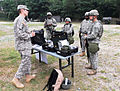 25th Transportation Battalion conducts a CBRN situational training exercise DVIDS603351.jpg