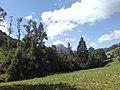38380 Saint-Pierre-de-Chartreuse, France - panoramio - Chris Sampson (9).jpg
