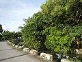549Pandi Bulacan Municipal Roads Landmarks 27.jpg