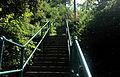 54th Street Steps Lawrenceville 6.jpg