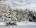 71-101-5009 Cherkasy Peremoga Park SAM 3268.jpg