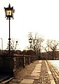 9109viki Most Oławski (Waloński). Foto Barbara Maliszewska.jpg