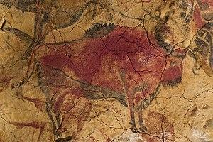 Cave of Altamira - Image: 9 Bisonte Magdaleniense polícromo