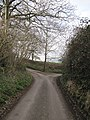 A fork in the road - geograph.org.uk - 2309607.jpg