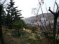 A winter rain - panoramio.jpg