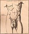 Acta physico-medica Academia Caesareae Leopoldino-Carolinae Naturae Curiosorum (1740) (14750008036).jpg