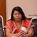 Adelaida Miranda Jiménez Panamá Defensores ambiente (33113712120) (cropped).jpg