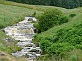 Afon Doethie Fawr near Blaendoethie, Ceredigion - geograph.org.uk - 1418916.jpg
