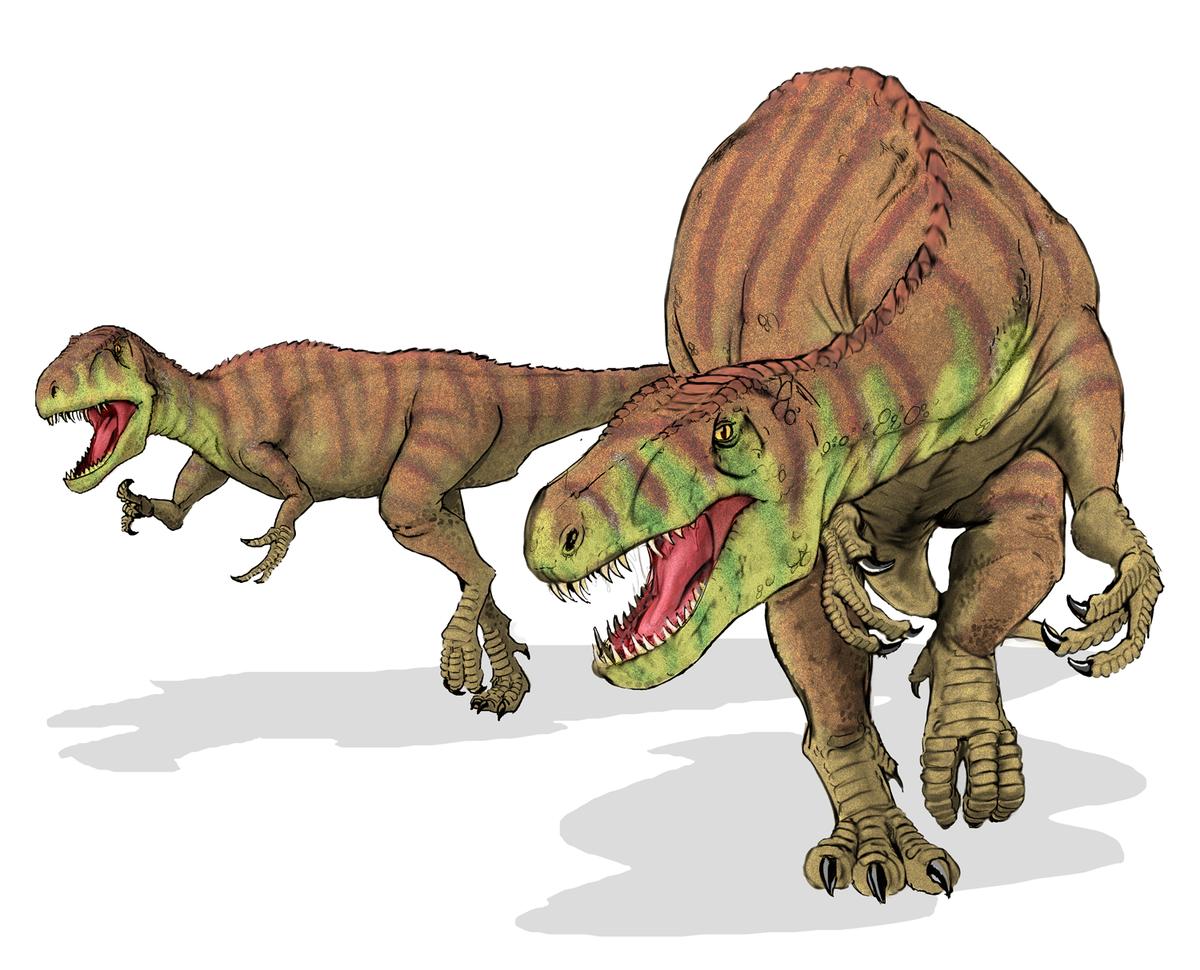 Megalosauridae wikipedia - Liste dinosaures ...