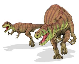 Megalosauridae - Afrovenator abakensis reconstruction