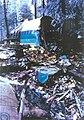 Air Inter Flight 148 wreckage.jpg