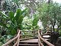 Alameda Gardens, Africa beds.jpg