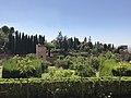 Alhambra garden11.jpg