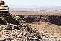 Aloe gariepensis på Fish river canyon-0472 - Flickr - Ragnhild & Neil Crawford.jpg