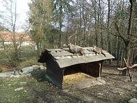 Alpensteinböcke im Heimat-Tierpark Olderdissen Bielefeld.JPG