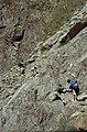Alpes-Maritimes Saint-Etienne-De-Tinee Vers Mont Tenibre Chute - panoramio.jpg