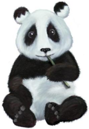 Window Maker - Amanda the Panda, mascot of Window Maker.
