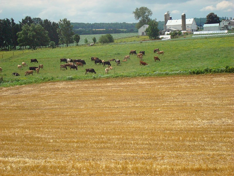 File:Amish Farm Lancaster County, PA 4.jpg