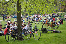 Amsterdam park sex