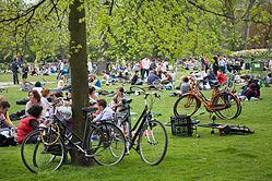 El mayor parque de Ámsterdam, complételo montando en bici
