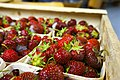 And a lot of strawberries (7572135292).jpg