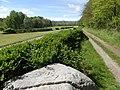 Antica pietra di confine. Parco dei Lagoni di Mercurago. Arona (Novara).jpg