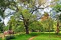 Anuradhapura. Nature. - panoramio.jpg