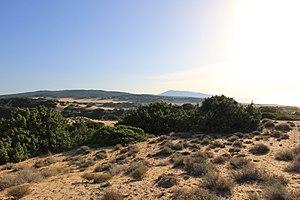 Arbus, Sardinia - Dune system of Piscinas