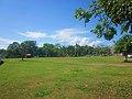 Area verde. - panoramio - holachetumal.jpg
