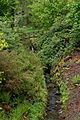 Armadale Castle - gardens 2.jpg