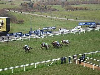 horse racing venue in England