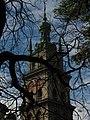 Assumption church and Kornyakt tower 28.jpg