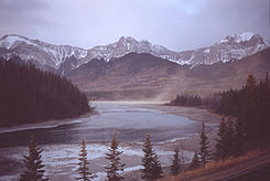 Athabasca at Brule Lake.jpg