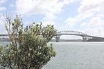 Auckland Harbour Bridge 0780 (9977688826) (2).jpg