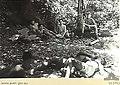 Australian guerillas in Timor.jpg