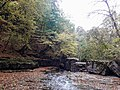 Autumn Lastiver 3.jpg